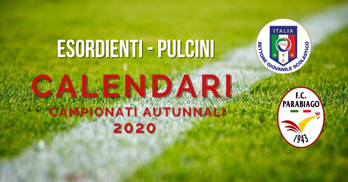 Calendari Esordienti- Pulcini